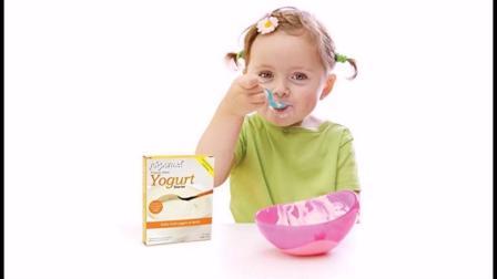 SCD酸奶发酵剂自制益生菌酸奶