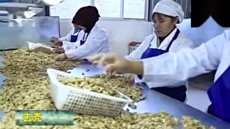红云蜂蜜核桃仁200g袋装云南大理特产南涧新鲜香酥蜂蜜琥珀核桃仁