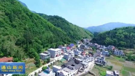 环保公益网络电影《萤火虫之恋》 在湖北通山萤火小镇开机