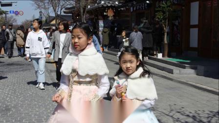 浪漫韩国游习作