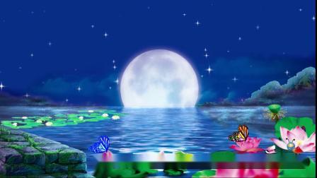 S1014舞蹈 月之花语 唯美夜晚月亮荷花 圆月蝶舞 舞蹈 节目晚会 LED背景大屏视频素材 制作