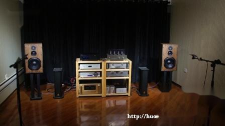 火狼电声 Volt bm2500.4 vm527 ow3 英国声10寸3分频书架音箱