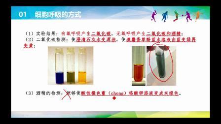 高中生物必修1·分子与细胞-5.3ATP的主要来源——细胞呼吸