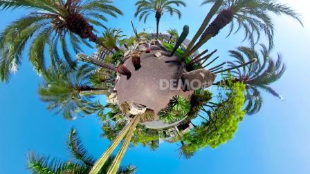 c656 4K高清画质创意星球棕树仙人掌城市圆球节目舞台视频制作素材