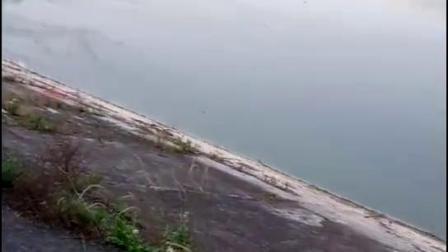 昭化区水体被污,小百姓怨声载道
