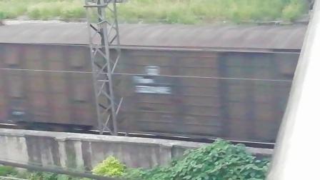 HXD1C8009-货列接近新余市长青南路立交桥