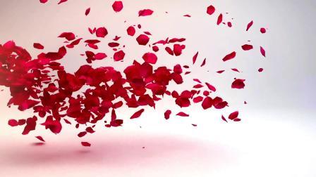 1129 超唯美浪漫红色玫瑰花瓣飘落我们结婚啦婚礼庆典结婚爱情开场视频片头ae模板电子相册 快闪视频 科技视频