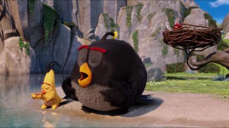 《愤怒的小鸟》游泳片段语拉丁版