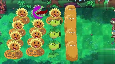 植物大战僵尸2动画版 第32集