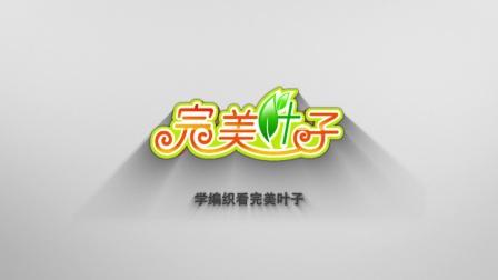 黄萍叶子编织视频第384集星空片头宣传