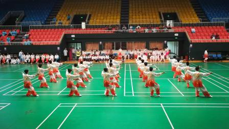 海淀区太极拳协会2019武术展示赛暨跨年度总结表彰大会~24式太极拳表演