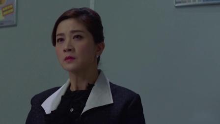 《十二传说》24 顾在容老婆委屈哭诉,潘朵拉傅子博讨论案情