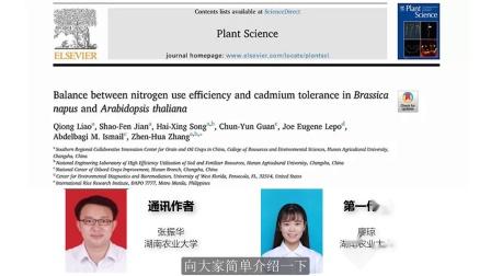 Plant Sci:湖南农大丨氮素利用效率与镉耐受性的平衡