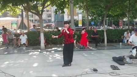 由杨柳演唱的豫剧《考红》选段