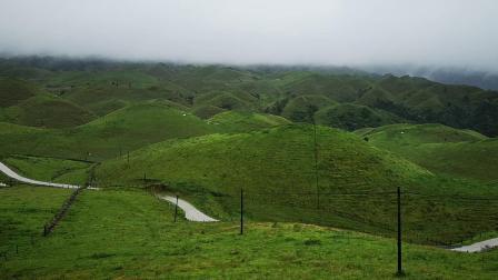 湖南邵阳城步南山牧场--南方的呼伦贝尔