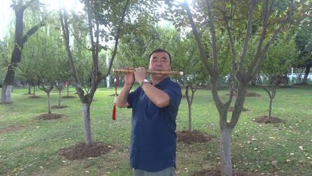 张永纯 笛子独奏 骏马奔驰保边疆 ,录像姜瑰笙 ,袁再彪制笛,F调笛做2演奏。