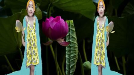 荷花小仙女
