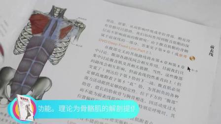 正版现货 解剖列车—徒手与动作治疗的肌筋膜经线(平装版) 简体中文第三版 全綵肌筋膜书籍人体解剖学图谱【赠送网盘影片】
