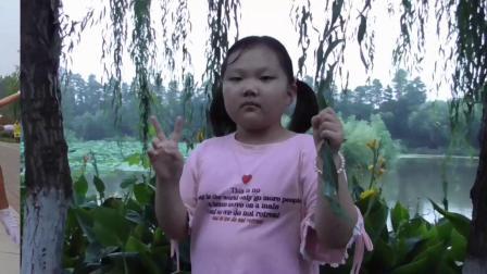荆州国家湿地公园 盛夏健身操爱好者晨练