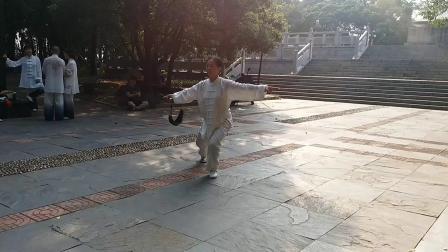 陈新纯公园演练49式武当太极剑之《铁血丹心》版