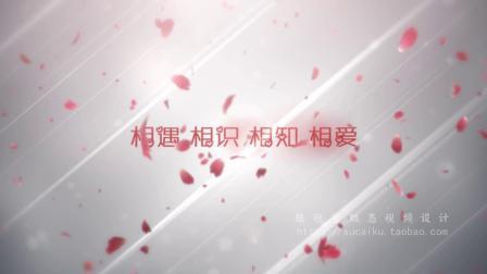1111唯美浪漫玫瑰花瓣飞舞字幕文字特效求婚求爱表白婚礼视频片头ae模板 ae片头 pr模板 会声会影 PPT