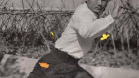 武法义老师与他的弟子们1970~2019