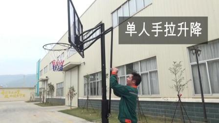 成人室外篮球架户外标準移动篮球框儿童室内篮筐家用可升降青少年
