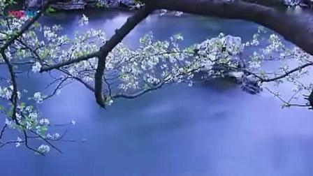 蓝色多瑙河小约翰施特劳斯最著名的圆舞曲 声乐版依然 中文翻唱