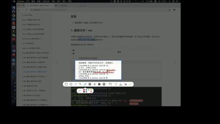 python进阶教程day1-1.13. [重点]常用命令-删除文件和目录-2