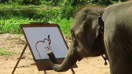 动物界的艺术家!大象用笔画出自己/PAssionAck