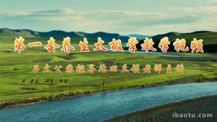石太公园辅导站第一套养生太极掌教学视频