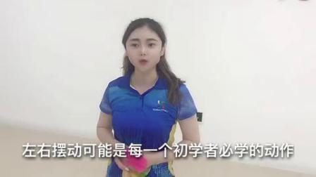 华柔柔力球【刘红】花式柔力球常用技术动作——左右摆动(一)
