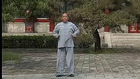 冯志强陈式心意混元24式-全套正面