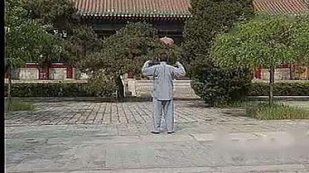 冯志强陈式心意混元24式-全套背面-跟我学
