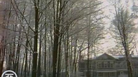 Трио_(1987)