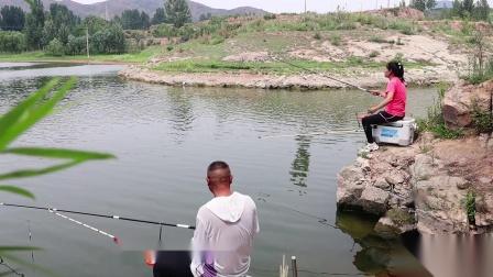夏季钓鱼,打窝后鱼不开口是什么原因?