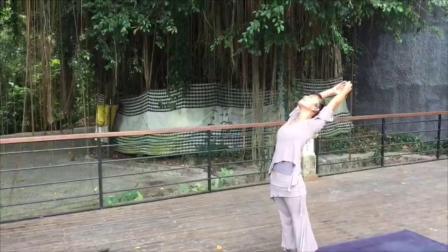 清瑜伽巴厘岛榕树下圣水旁冥想yujia