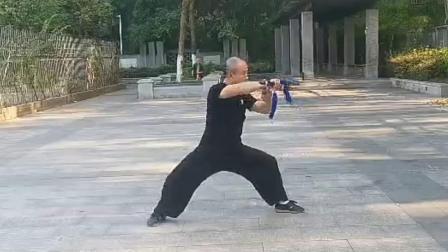 49式陈式太极剑   太极缘 谢小康老师演练