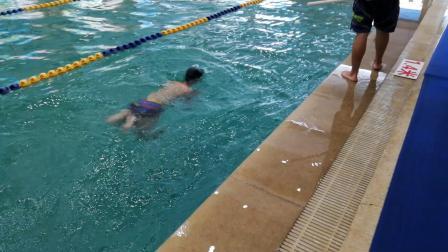 新乐天游泳班学员祁光义入门视频