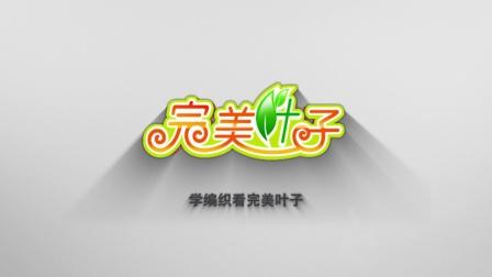 黄萍叶子编织视频第388集月花园片头宣传