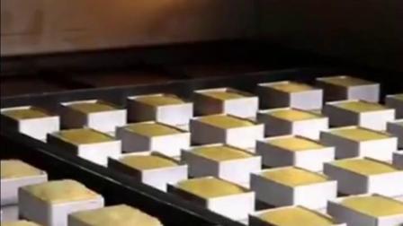 君晓天云台湾凤梨酥加厚烘焙模具长方形饼乾脱模器饼乾压板模土凤梨酥模具