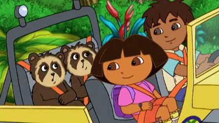 迪亚哥熊科动物 特辑 迪亚哥和朵拉在路上遇见美洲狮,快点躲开它们