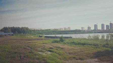 佳木斯市向阳区新丰村灰池子复垦以后的视频