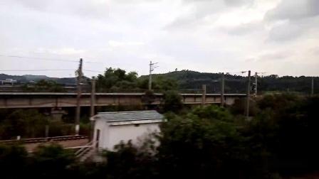 宁局视频14