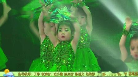 长春市小舞星艺术培训学校小草小舞星