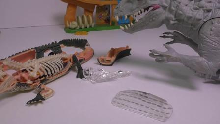 霸王龙和印度教暴龙鳄鱼解剖为孩子们设置有趣的恐龙玩具电影