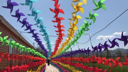 桑干河国家湿地公园的风车大道