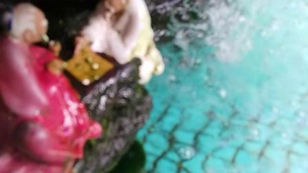 妙手杏林摄像游鱼原创
