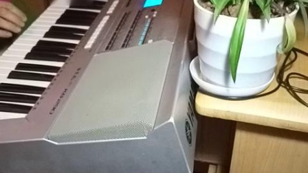 音乐【四季歌】经典歌曲电子琴演奏。电影马路天使插曲。