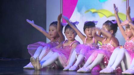 艺术校园小荷花贵州省区《小脚丫》七色花舞蹈培训学校